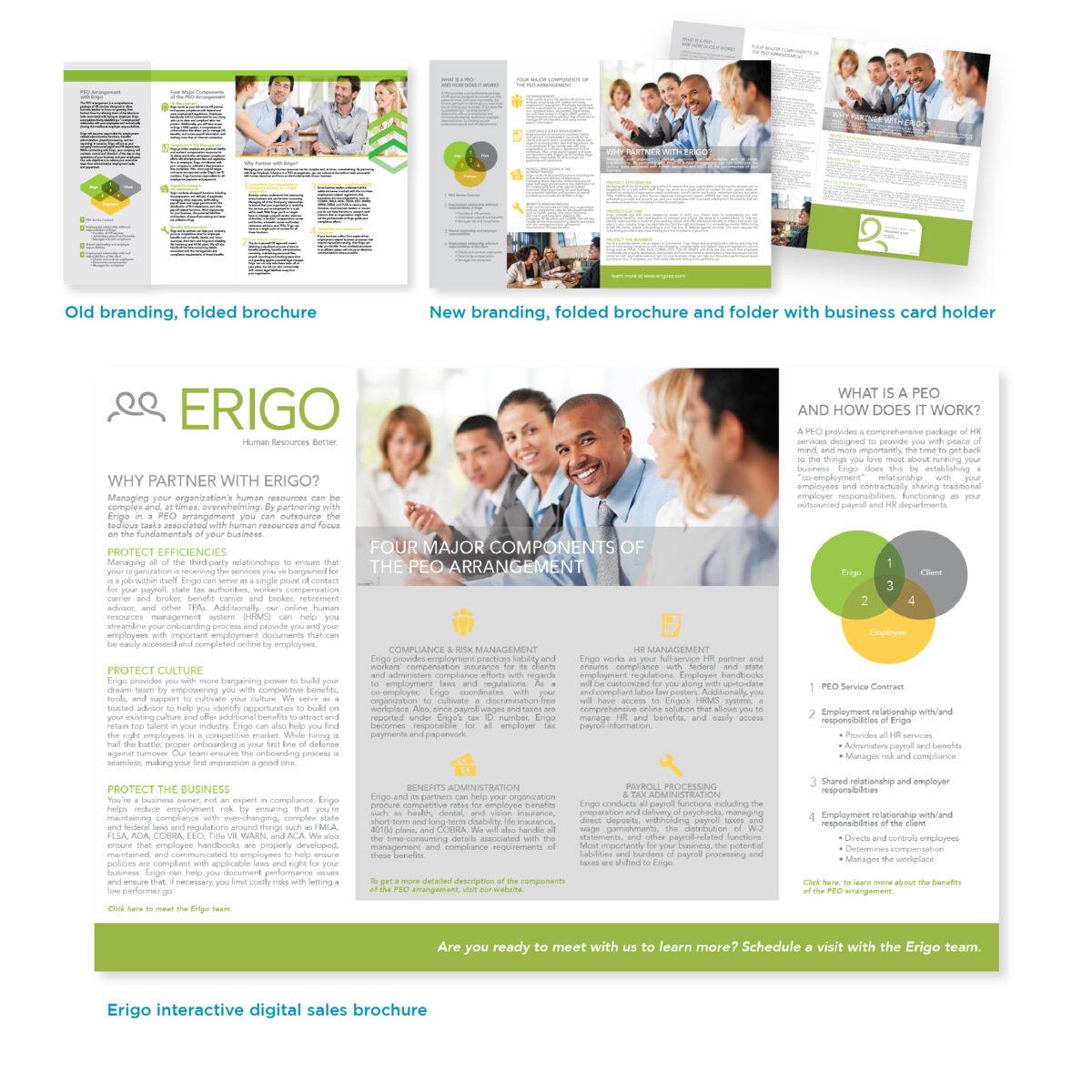 Erigo Overview Pamphlet